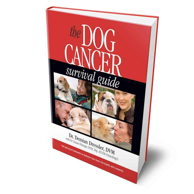 Dog Cancer Survival Guide Demian Dressler, DVM